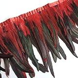 Sowder Rooster Hackle Feather Fringe Trim 10-12inch in Width Pack of 1 Yard (Red&Black) (Color: Red&black)