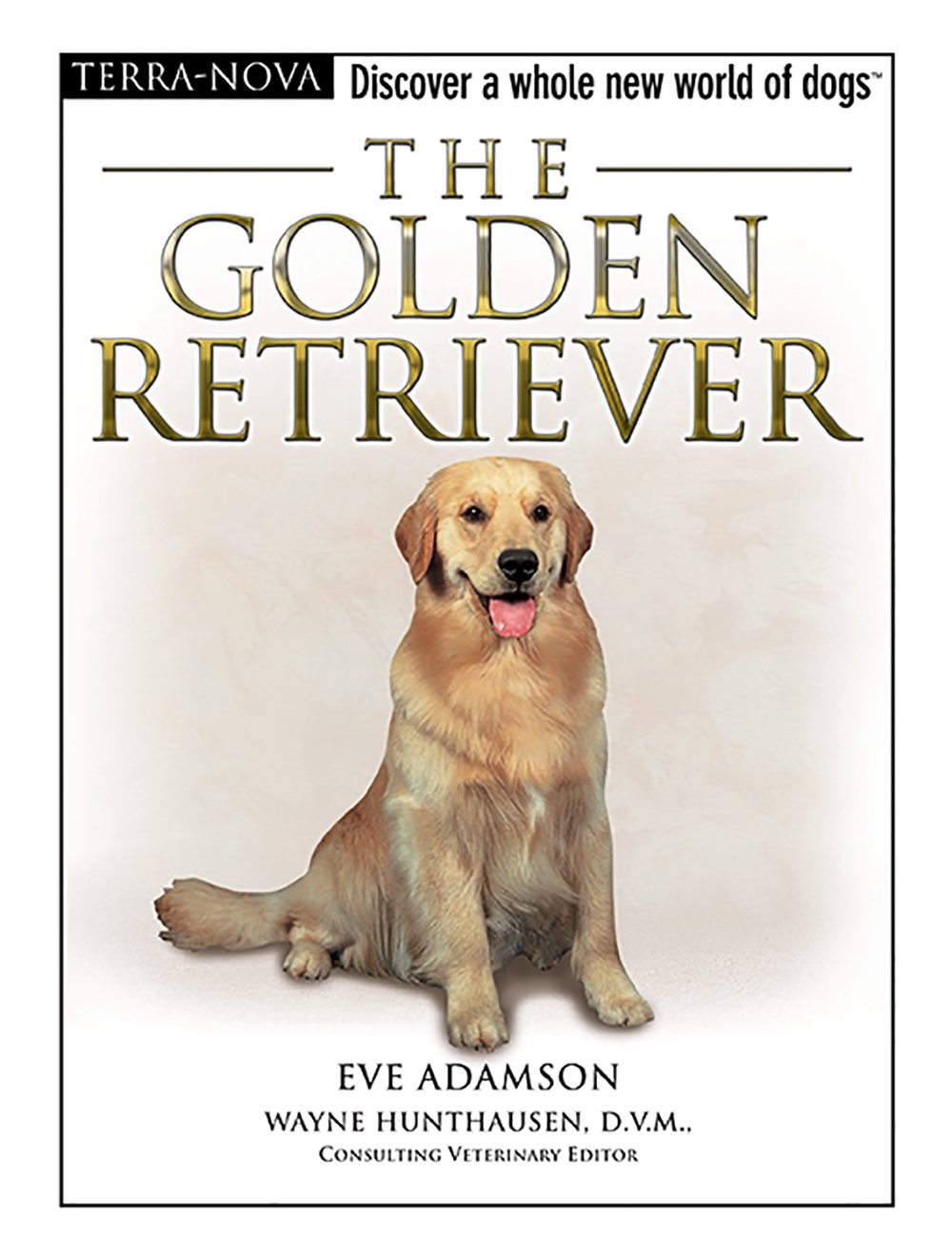 The Golden Retriever R Ann Johnson Golden Retriever