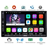 ATOTO A6 Double Din Android Car Navigation Stereo with Dual Bluetooth - Standard A6Y2710SB 1G/16G Car Entertainment Multimedia Radio,WiFi/BT Tethering Internet,Support 256G SD &More (Color: A6Y Standard 1G+16G-SB)