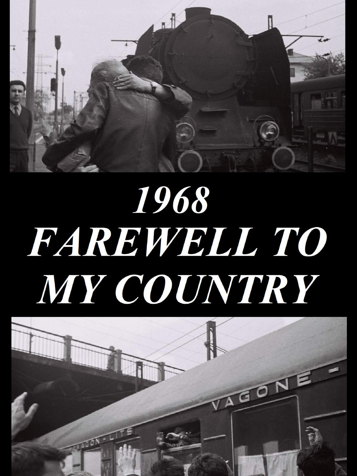 Farewell To My Country