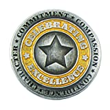 TCDesignerProducts Distinguished Silver & Gold Celebrating Excellence Star Award Lapel Pin, 12 Pins (Color: 12 Pins)