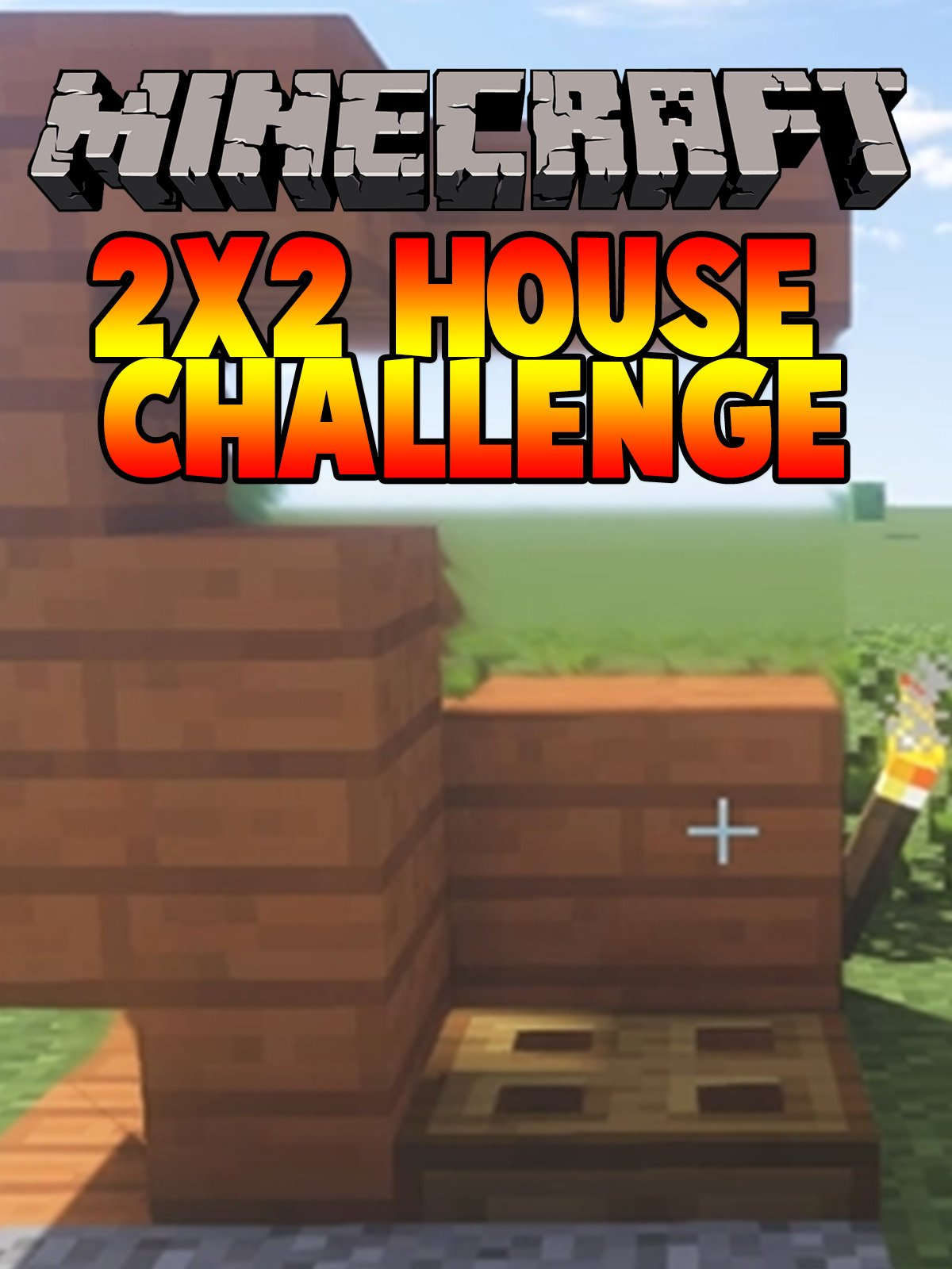Clip: Minecraft: 2x2 House Challenge