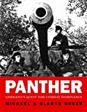 Panther: Germany's quest for combat dominance (General Military)