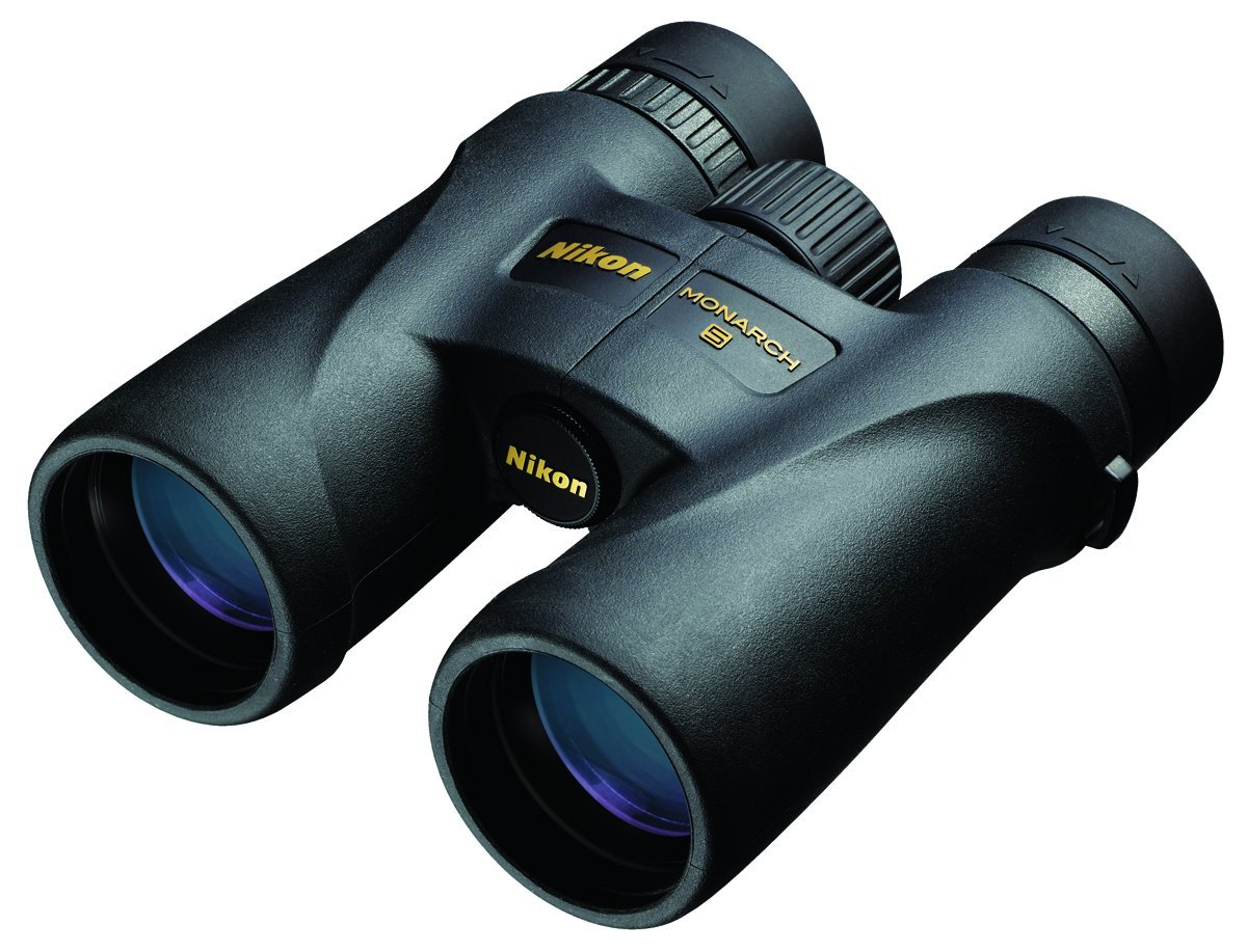 Nikon 7577 MONARCH 5 10x42 Binocular (Black)
