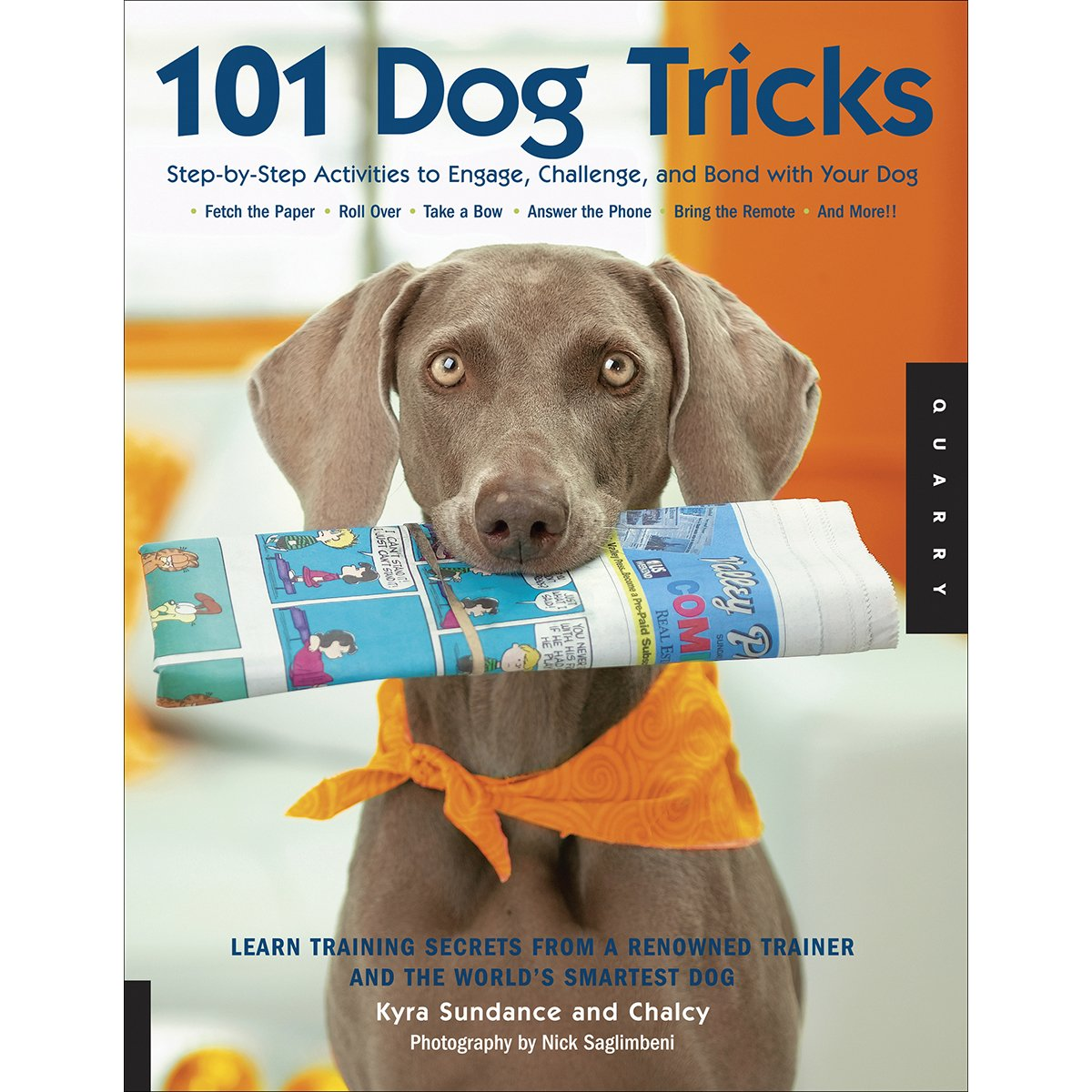 Buy 101 Dog Tricks: Step By Step Activities To Engage, Challenge, And Bond  With Your Dog Book Online At Low Prices In India  101 Dog Tricks: Step By  Step