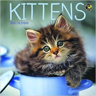2016 Kittens Mini Calendar