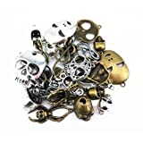 Coolrunner 100 Gram Mixed Alloys DIY Antique Skull Charms Pendant Craft Bracelet Necklace Jewelry Making Accessory (Color: Bronze)