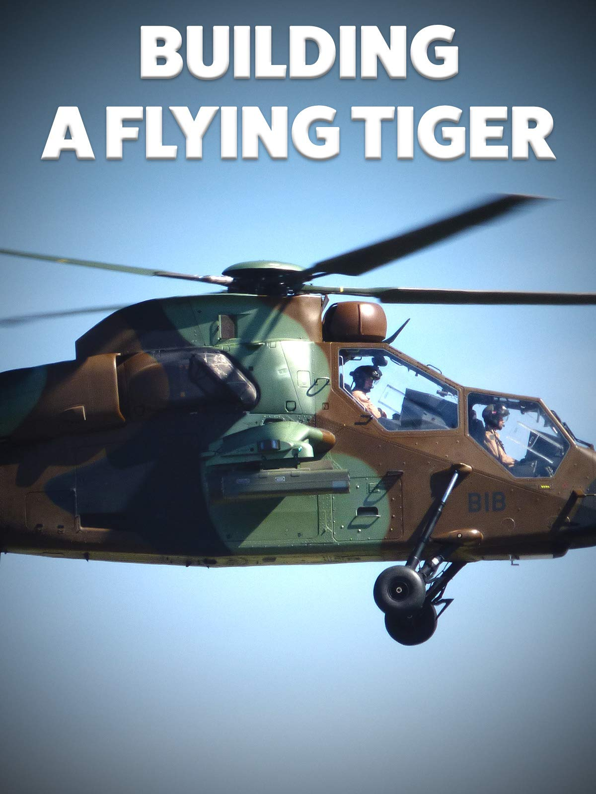 Building a Flying Tiger