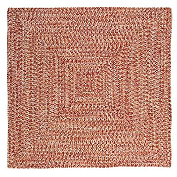 Catalina Polypropylene Braided Square Rug, 4-Feet, Fireball