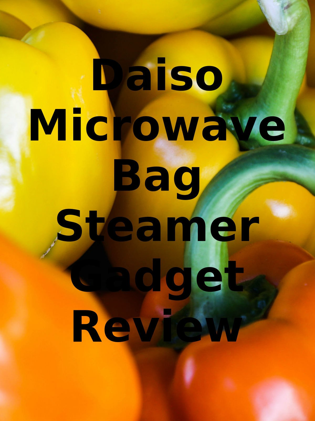 Review: Daiso Microwave Bag Steamer Gadget Review
