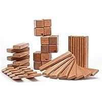 Tegu 52-Pc. Magnetic Wooden Block Set