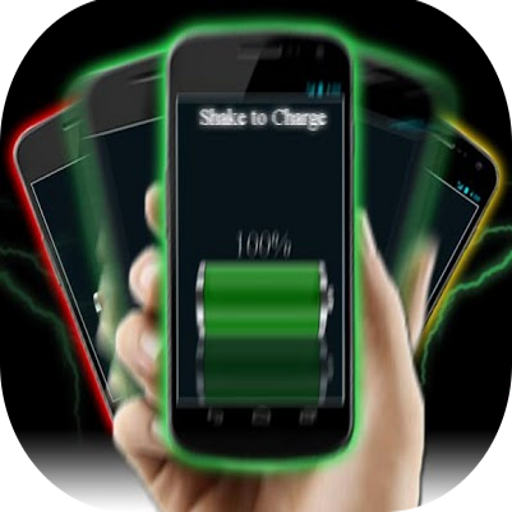 Grupo Ceysa Shake Battery Charger