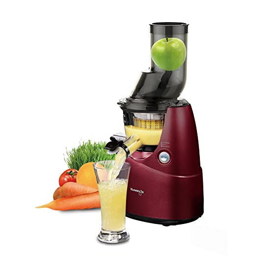 Best Slow Juicer For Greens : How To Get A Beach Body By Juicing - Best Juicer For Leafy Greens