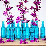 Luna Bazaar Small Vintage Glass Bottle Set (6.5-Inch, Cylinder Design, Turquoise Blue, Set of 12) - Flower Bud Vases Bulk - For Party and Wedding Centerpieces