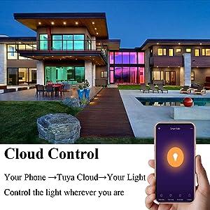 BoazSamrt BR30 E27 WiFi Light Bulb,LED Lamp Voice Control