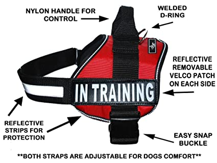 Service Dog Vests And Patches Service Dog Harness Vest Cool