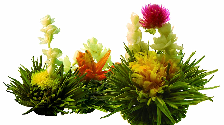 Teas Etc S0601 8-Count Flowering Green-Tea Sampler