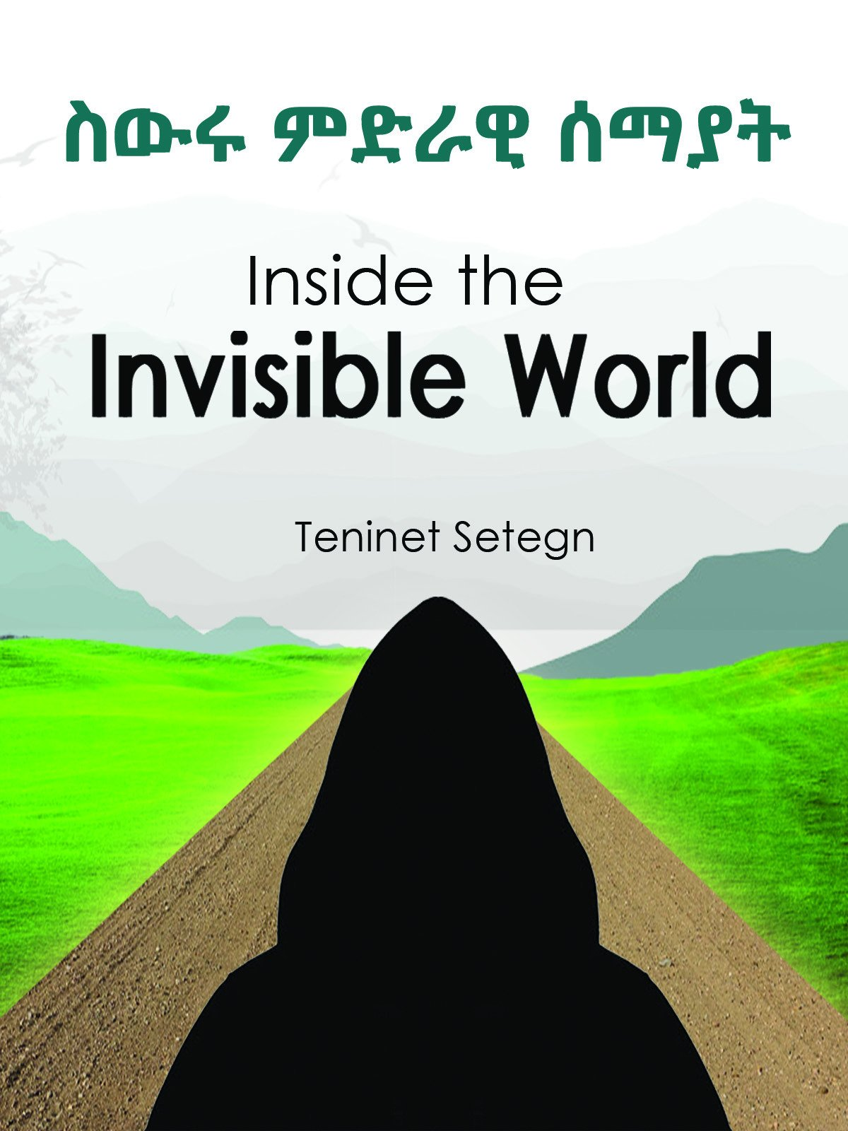 Inside the invisible world