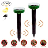 Fomei Ultrasonic Solar-Powered Mole Repellent Professional Mole Repeller Pest Deterrent Repelling Mole, Rodent, Vole, Shrew, Gopher, Snake for Outdoor Lawn Garden Yards Pest Control (2 Pack-Round) (Color: Green-black)