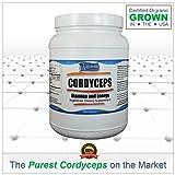 Kala Health - Pure Cordyceps Sinensis 740mg (600 Vegetarian Capsules: Economy Size)- The Natural Mushroom for Increased Vitality, Endurance and Stamina