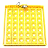 OlogyMart 42 Position 220V Eggs Turner Automatic Chicken Quail Bird Poultry Egg Incubator Tray (Color: As Shown)