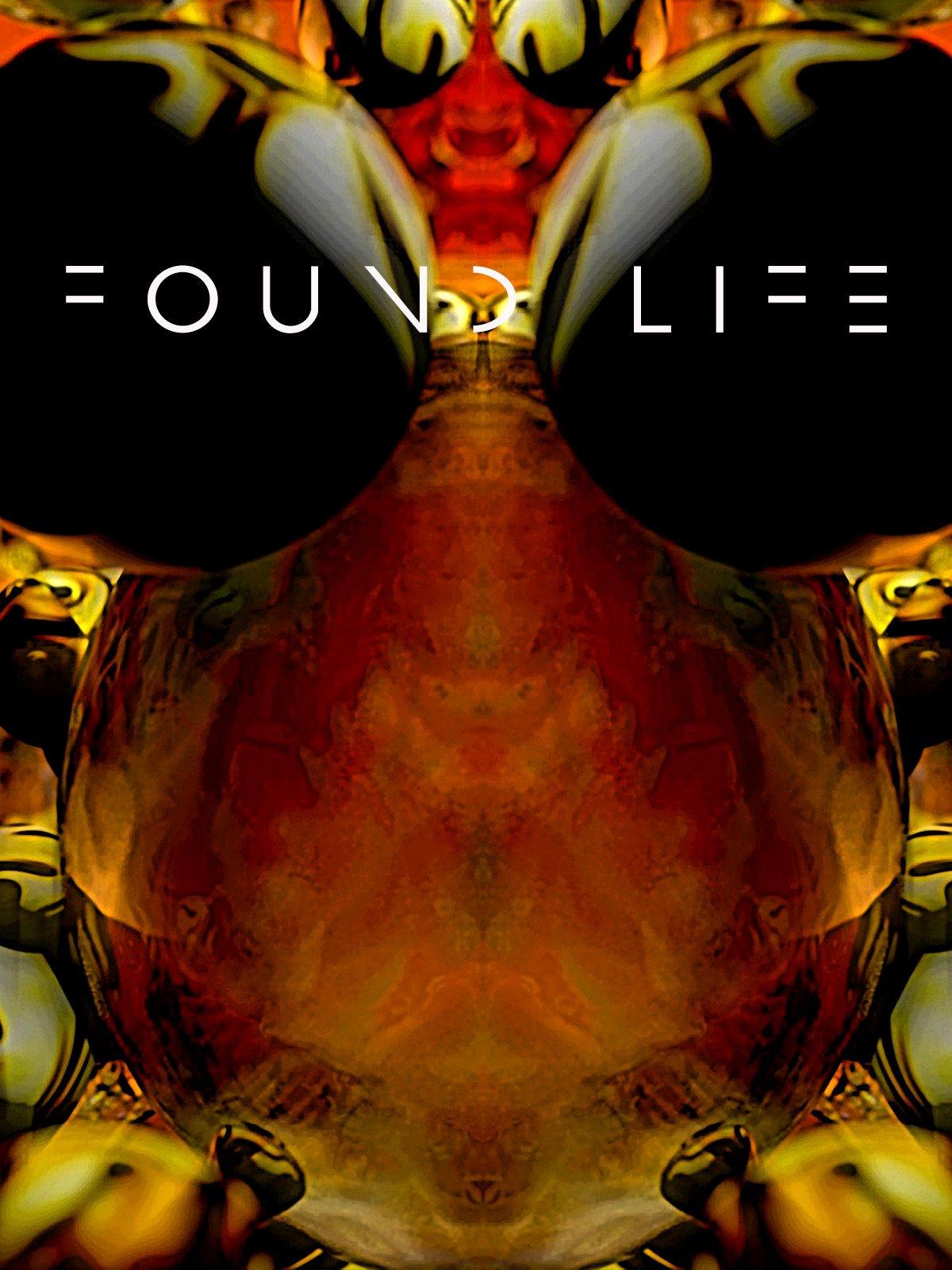 Found Life on Amazon Prime Video UK