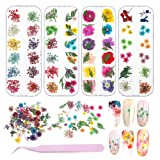 4 Boxes Nail Dried Flowers, BOSIXTY 48 Colors 3dDriedFlowers NailArt, Real Natural Flowers Nail Art Supplies for DIY Crafts Nails Decorations Nail Salon Nail Decals Nail Design