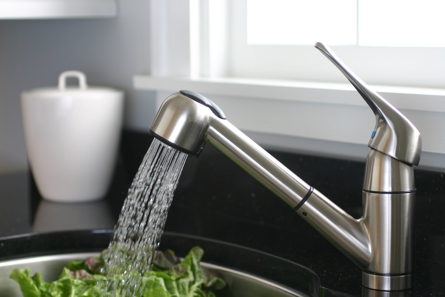 Premier Sonoma Lead-Free Pull-Out Kitchen Faucet