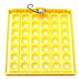 42 Position 220V Eggs Turner Automatic Chicken Quail Bird Poultry Egg Incubator Tray - Tools & Home Improvement Hand Tools - 1x 42 Chicken \/ Quail Egg Tray