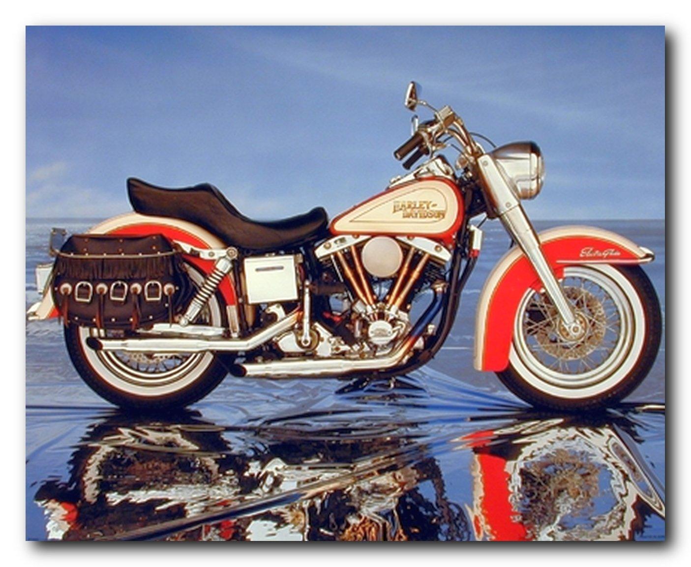 Vintage Motorcycle Harley Davidson Electra Glide Wall