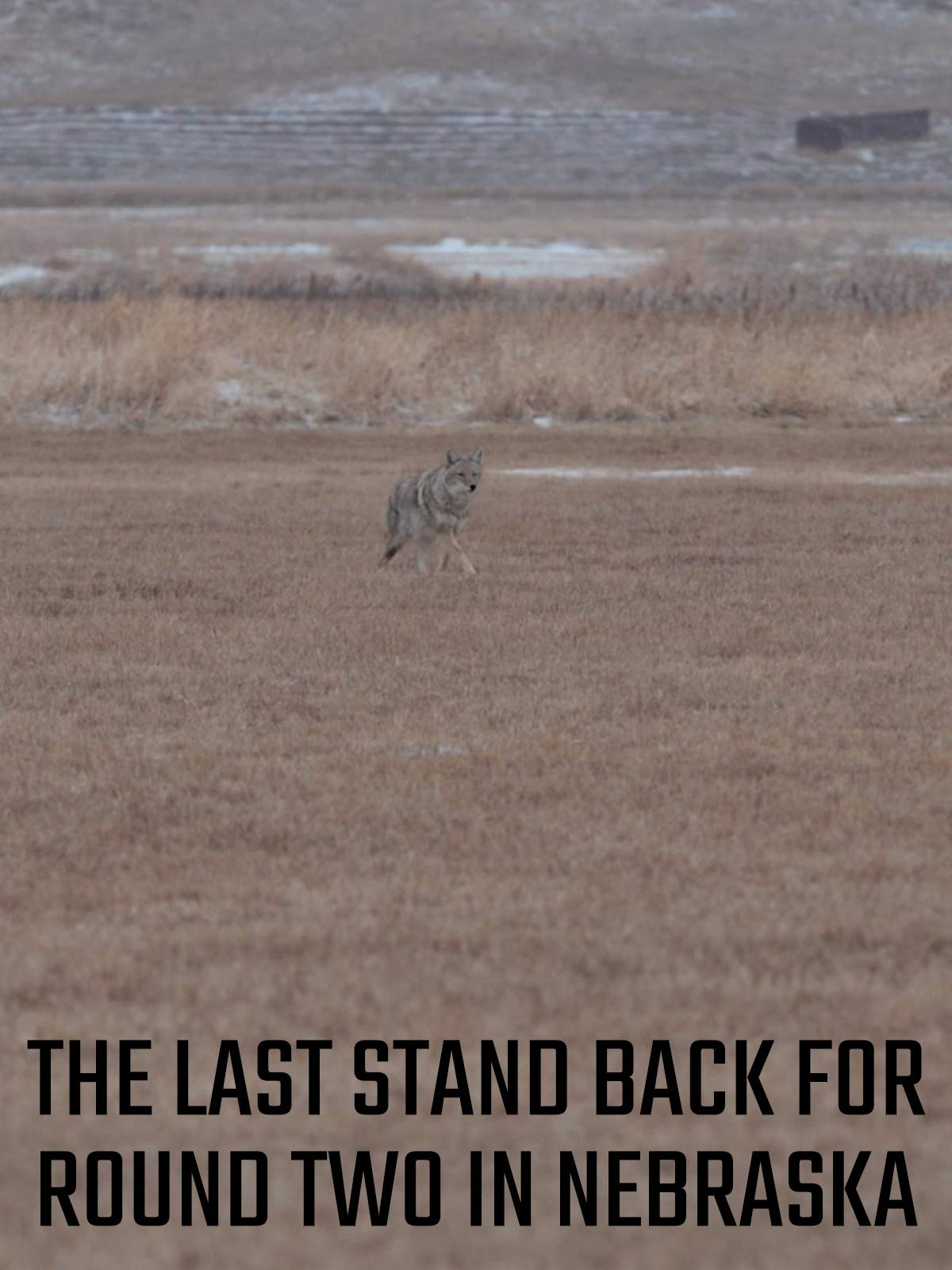 The Last Stand Back For Round Two In Nebraska