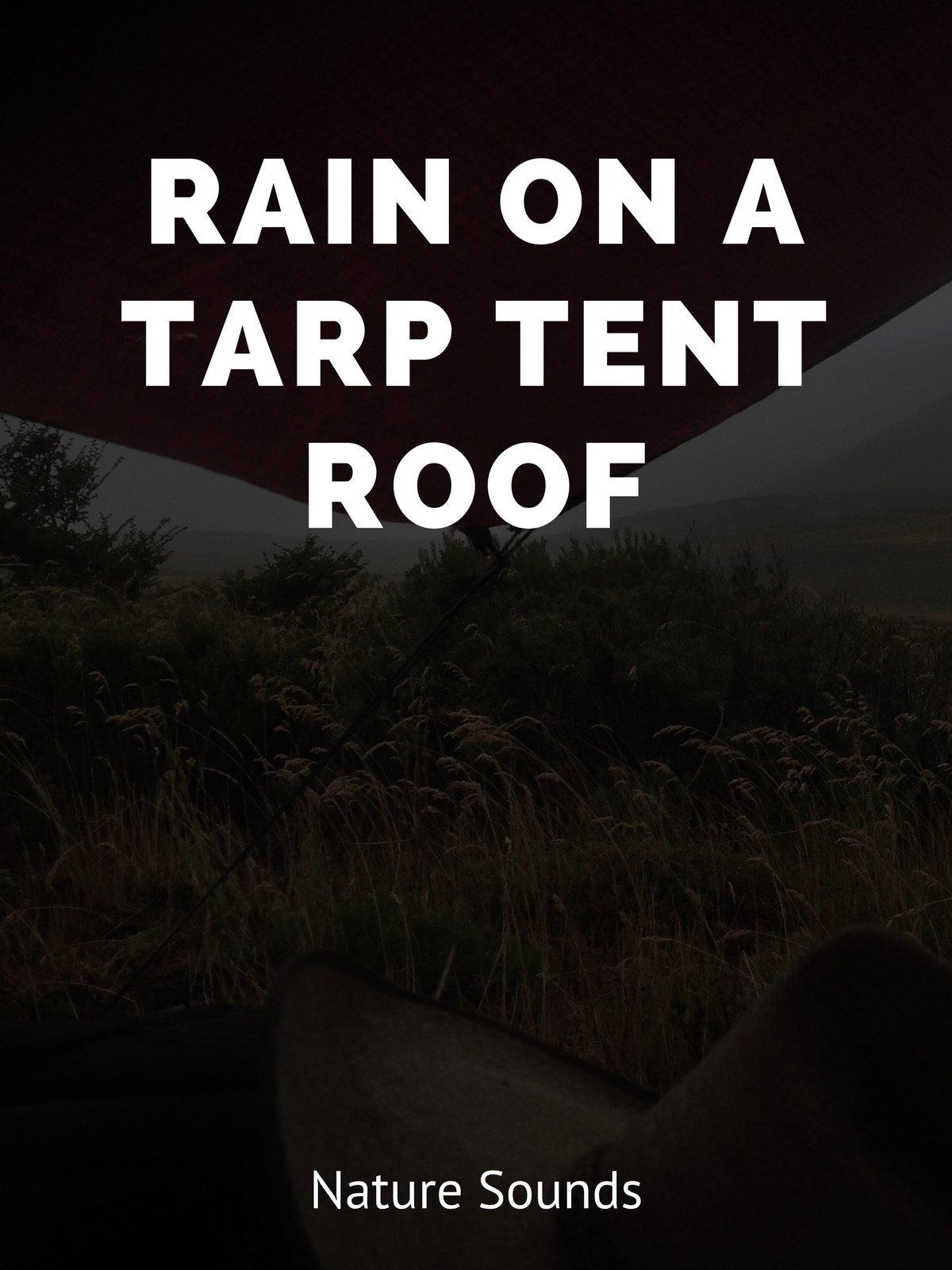 Rain on a Tarp Tent Roof