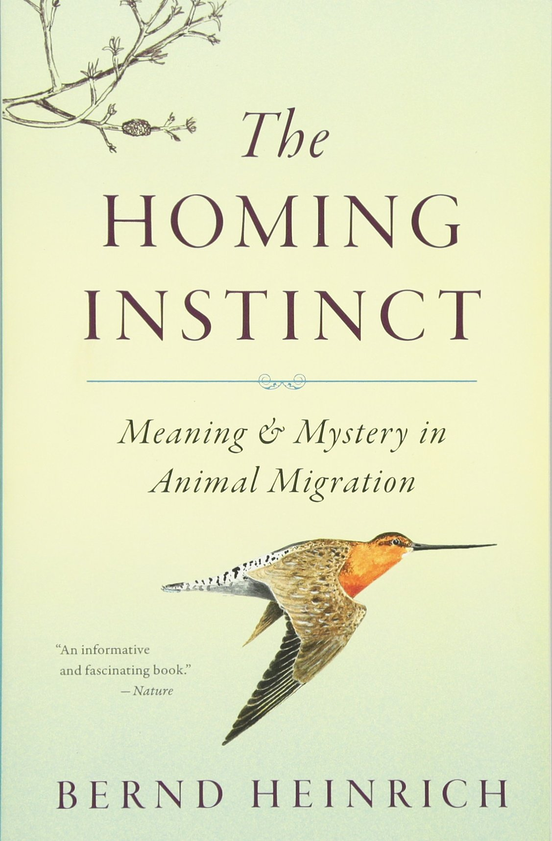 Buy The Homing Instinct: Meaning And Mystery In Animal Migration Book  Online At Low Prices In India  The Homing Instinct: Meaning And Mystery In  Animal