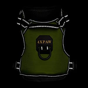 4XPAW Dog Harness with Padded Handle,Reflective in Night,Nylon Oxford Mesh Soft Padding Lining, No-Pull Metal D Ring,Quick Release Buckle (M (Chest 19-30), Green) (Color: Green, Tamaño: M (Chest 19-30))