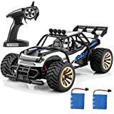 Distianert 1:16 Scale Electric RC Car Off Road Vehicle 2.4GHz Radio Remote Control Car 2W High Speed Racing Monster Truck (Color: Value Not Found, Tamaño: WJL00010 RC CAR)