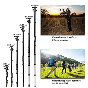 ZOMEI Aluminum Portable Tripod with Ball Head Heavy Duty Lightweight Professional Compact Travel for Nikon Canon Sony All DSLR and Digital Camera (Color: Q666 aluminum tripod, Tamaño: Q666 aluminum tripod)