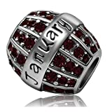 JMQJewelry Birthday Charms Bead For Bracelets (Dark Red, January Birthstone)