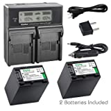 Kastar LCD Dual Smart Fast Charger & 2 x Battery for Sony NP-FV100, NP-FH100, NPFV100, NPFH100, FV100, FH100 and HDR-CX110, CX130/B, CX160/B, XR160, CX360V, CX560V, CX700V, PJ10, HDR-PJ30V, HDR-PJ50V (Tamaño: 2 batteries + 1 LCD dual charger)