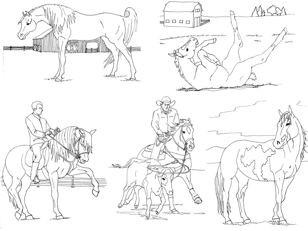 realistic horse coloring pages indian horse coloring pages with