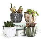 SUN-E Modern Style Marbling Ceramic Flower Pot Succulent/Cactus Planter Pots Container Bonsai Planters with Hole 3.35 Inch Perfect Gift Idea(4 in Set)