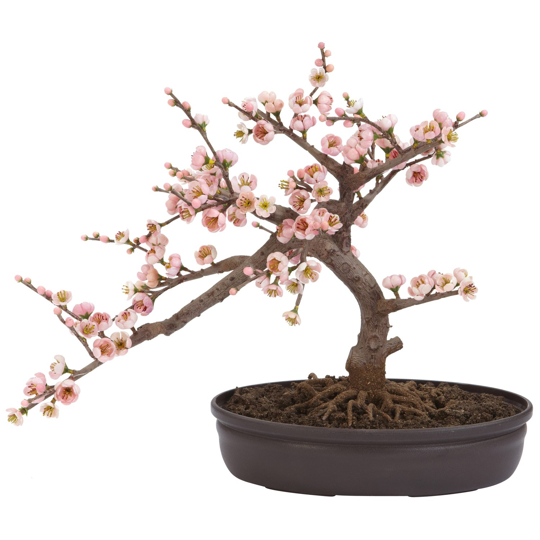 Silk Bonsai Trees Bonsai Silk Tree Pink
