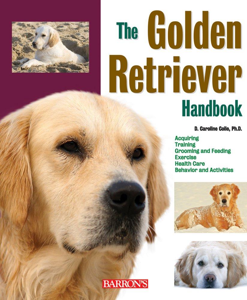 Golden Retriever Handbook R Ann Johnson Golden Retriever