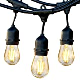 Brightech Ambience Pro - Waterproof LED Outdoor String Lights - Hanging 1W Vintage Edison Bulbs - 48 Ft Commercial Grade Patio Lights Create Bistro Ambience On Your Porch (Color: Black, Tamaño: 48 Feet Wire)