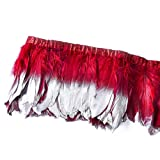 wanjin Duck Goose Feathers Trim Fringe Craft Feather Clothing Accessories Pack of 2 Yards(Burgundy and Silver) (Color: 1,burgundy and Silver)