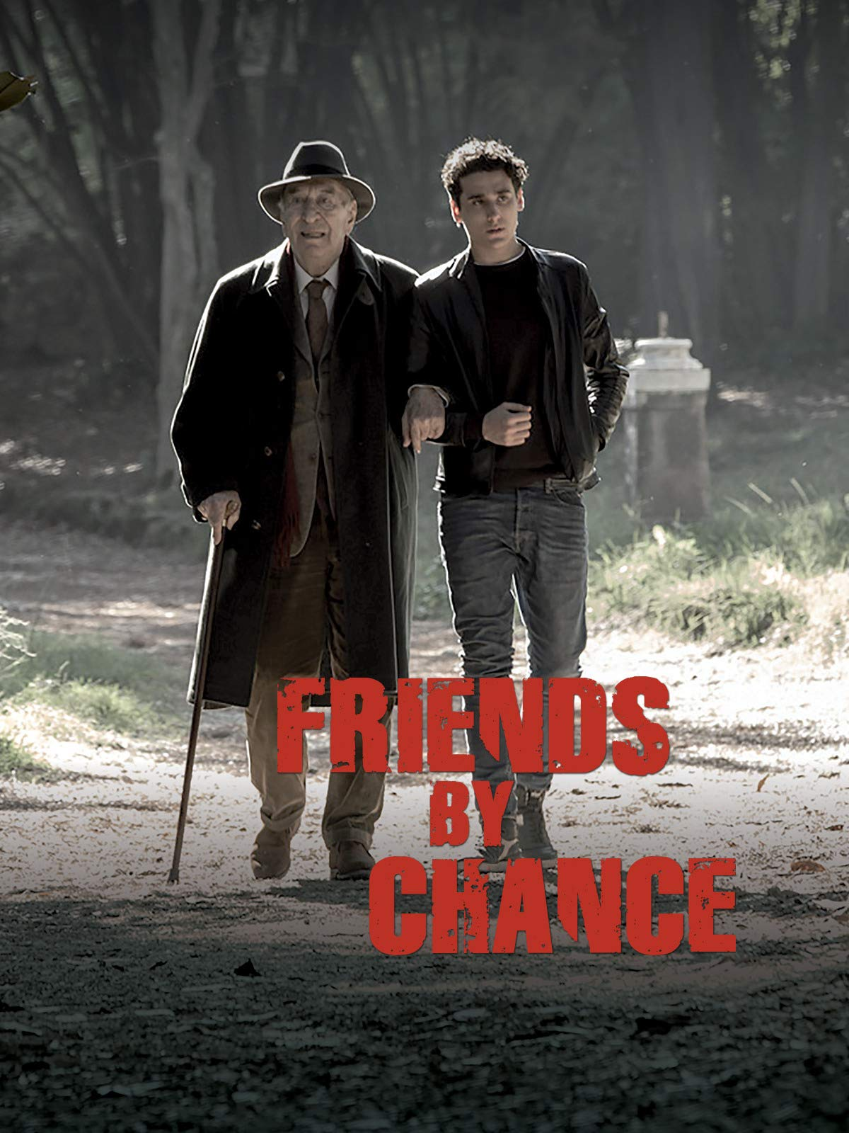 Friends by chance