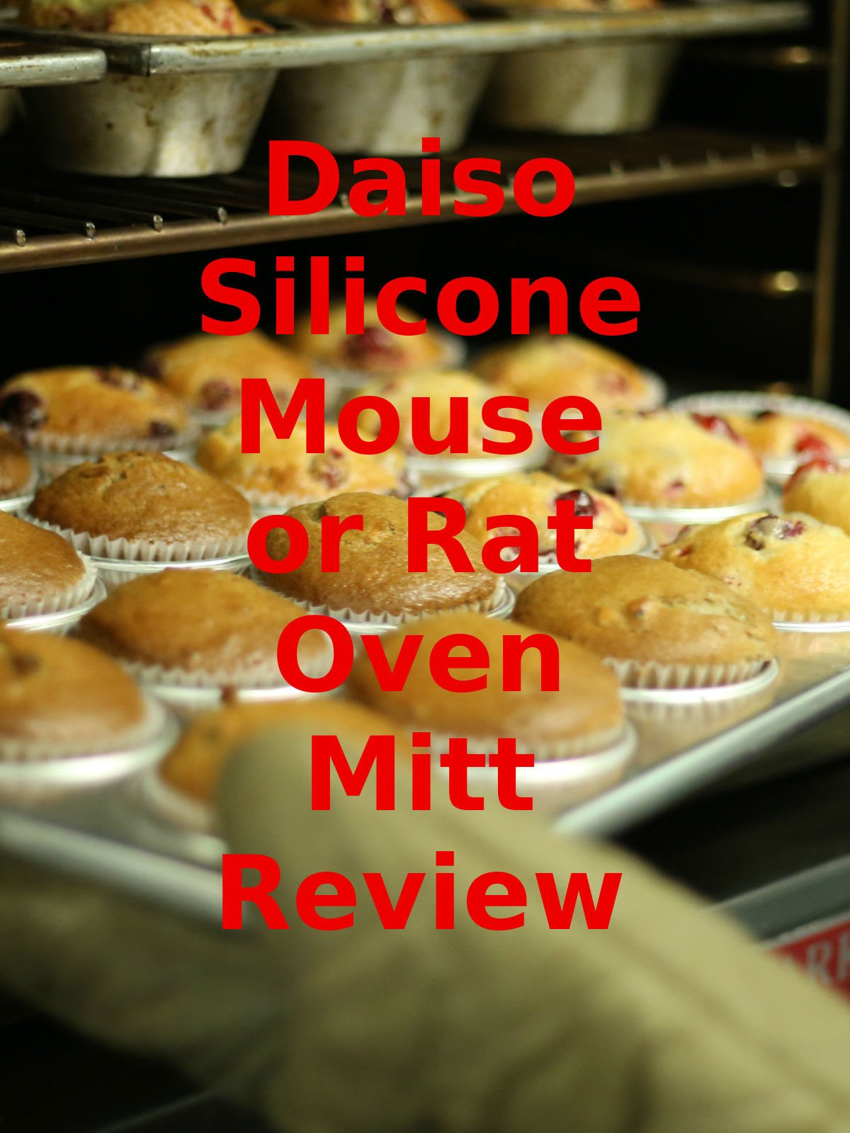 Review: Daiso Silicone Mouse or Rat Oven Mitt Review