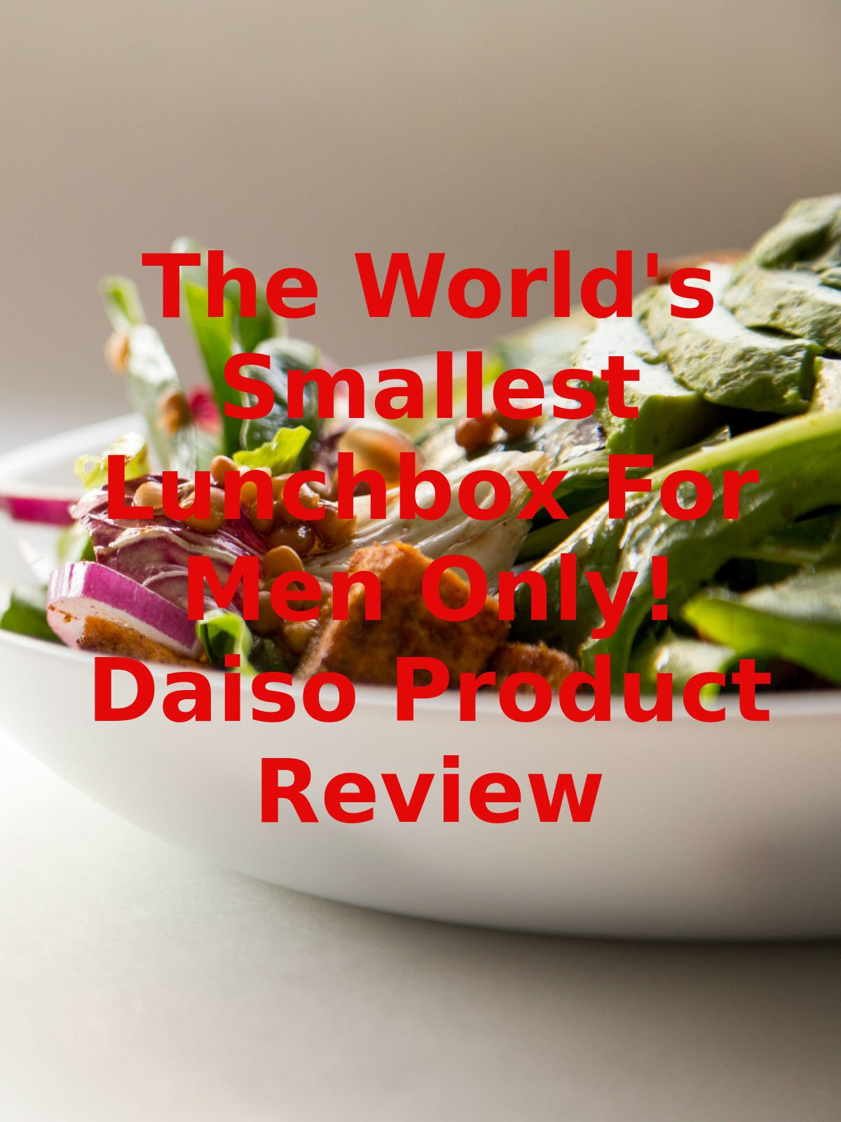 Review: The World's Smallest Lunchbox For Men Only! Daiso Product Review