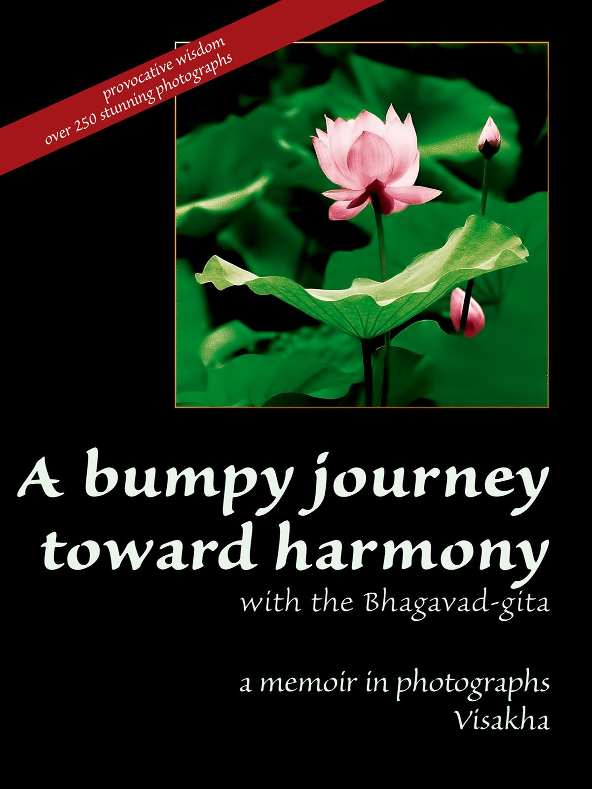 A Bumpy Journey Toward Harmony with the Bhagavad-gita: a memoir in photographs on Amazon Prime Instant Video UK