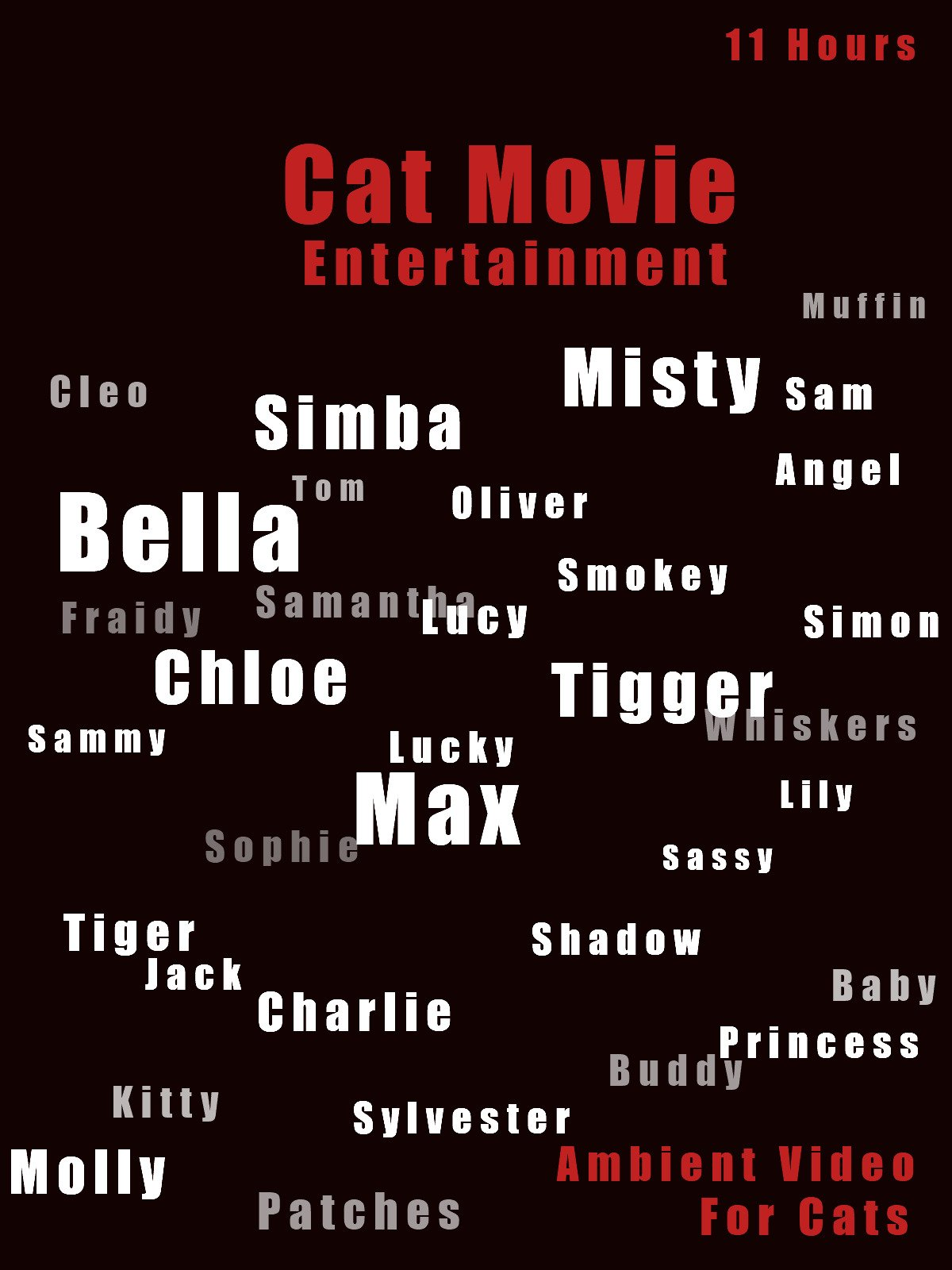 Cat Movie Entertainment