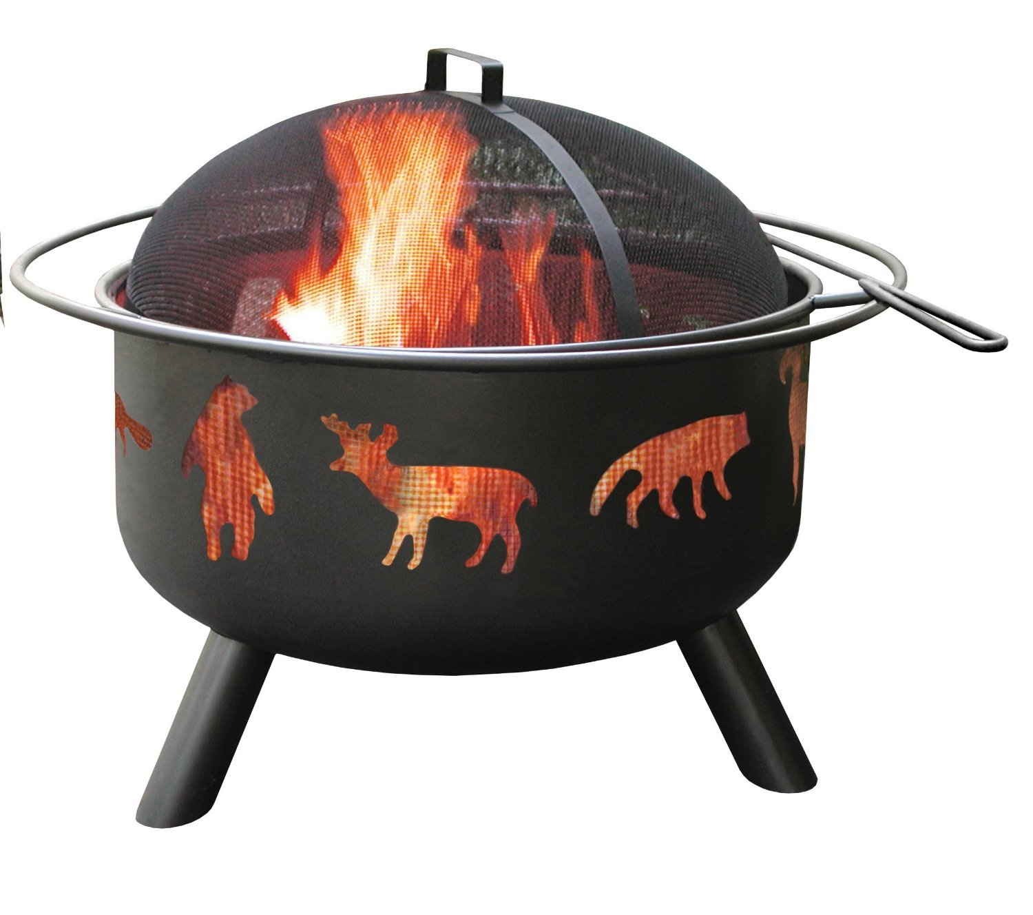 Fire Pit Problems Fire Pit Wildlife Black
